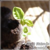 blog_100220_06.jpg