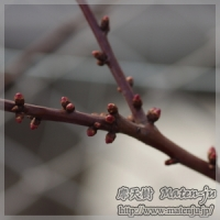 blog_100221_04.jpg