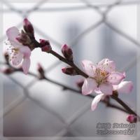 blog_100313_01.jpg