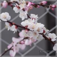 blog_100313_03.jpg