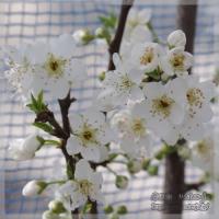 blog_100313_05.jpg